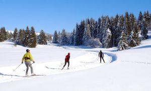 Ski de fond à savoie grand revard