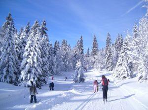 Ski nordique à Aillons-margériaz